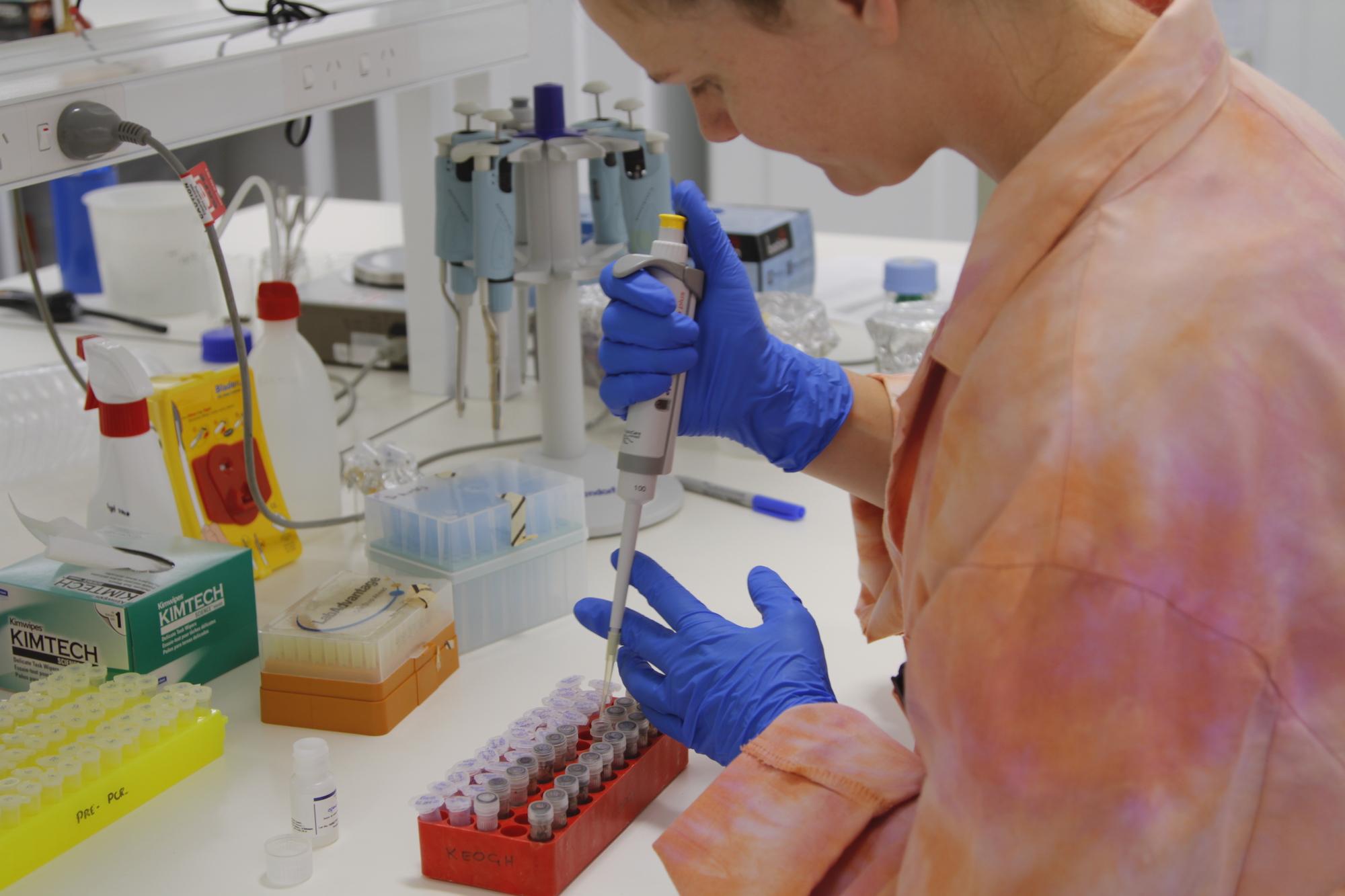 PhD Scholar Britt Brockett cleaning DNA in the labs.