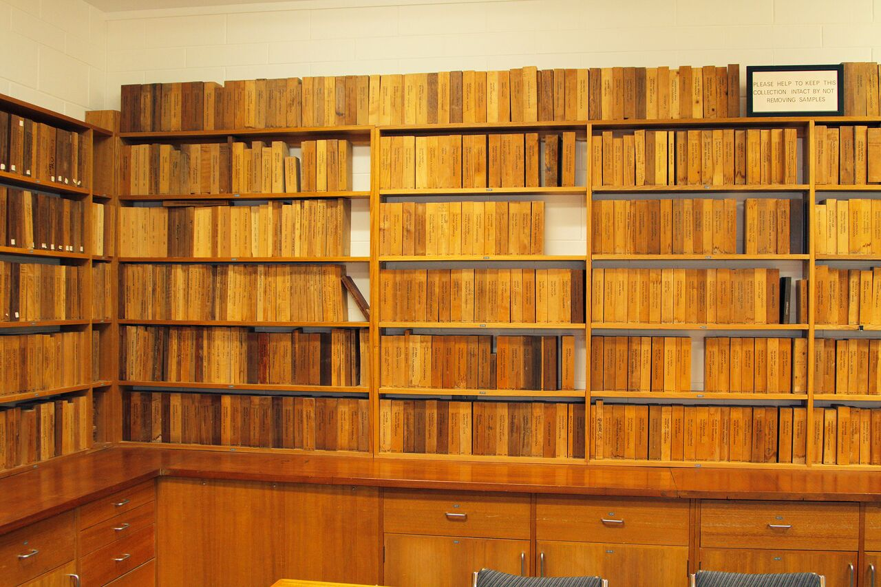 Wood Library (Xylarium)