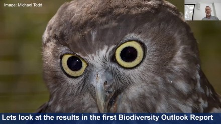 The Biodiversity Outlook Report: Trends in biodiversity and ecological integrity across NSW