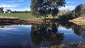 Image of a sustainable farm dam.